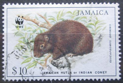Poštovní známka Jamajka 1996 Jamajský coney, WWF Mi# 883