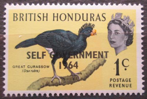 Poštovní známka Britský Honduras 1964 Hoko promìnlivý pøetisk Mi# 179