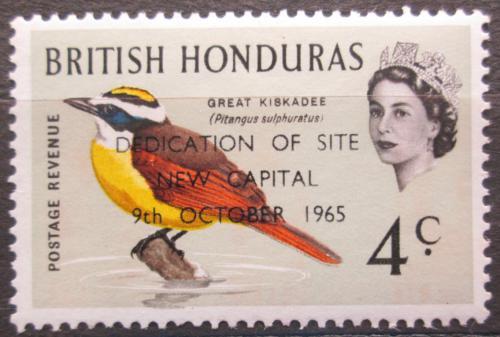 Poštovní známka Britský Honduras 1966 Tyran bentevi pøetisk Mi# 194