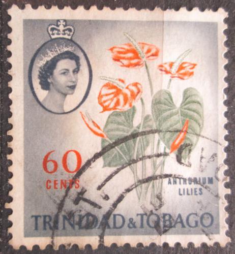 Poštovní známka Trinidad a Tobago 1960 Toulitka Mi# 184 A