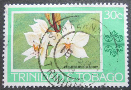 Poštovní známka Trinidad a Tobago 1978 Orchidej Mi# 368
