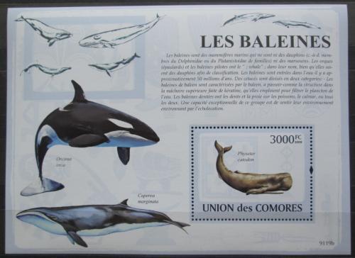 Poštovní známka Komory 2009 Velryby Mi# Block 475 Kat 15€