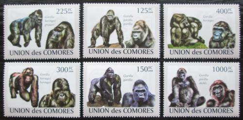 Poštovní známky Komory 2009 Gorily Mi# 2142-47 Kat 11€