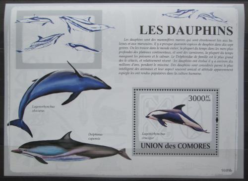 Poštovní známka Komory 2009 Delfíni Mi# Block 486 Kat 15€