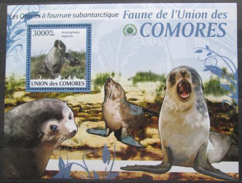 Poštovní známka Komory 2009 Tuleni Mi# 2466 Kat 15€