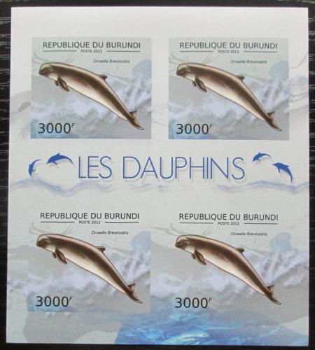 Poštovní známky Burundi 2012 Orcela tuponosá neperf. Mi# 2846 B Bogen