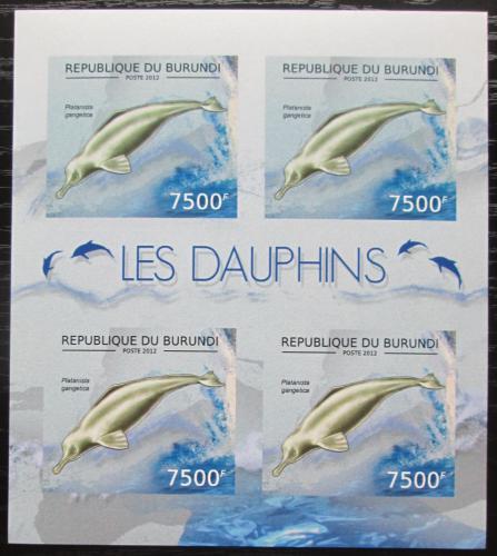 Poštovní známky Burundi 2012 Delfínovec ganžský neperf. Mi# 2847 B Bogen