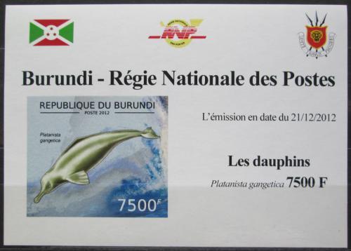 Poštovní známka Burundi 2012 Delfínovec ganžský DELUXE Mi# 2847 B Block