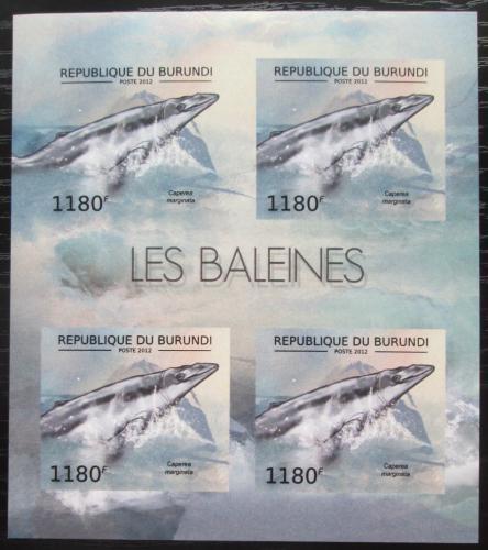 Poštovní známky Burundi 2012 Velrybka malá neperf. Mi# 2838 B Bogen