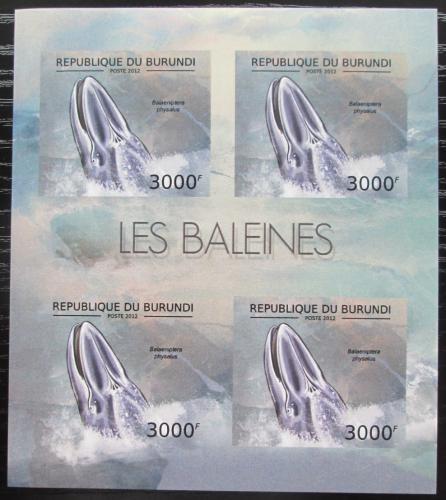 Poštovní známky Burundi 2012 Plejtvák myšok neperf. Mi# 2840 B Bogen