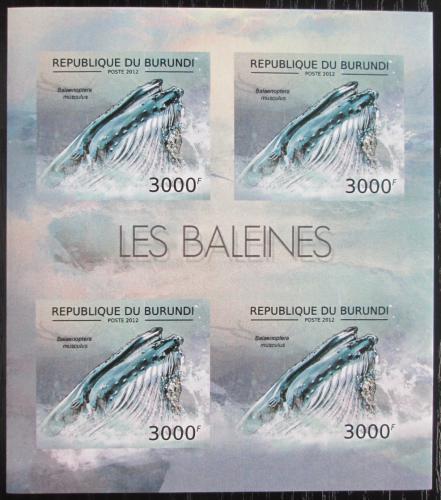 Poštovní známky Burundi 2012 Plejtvák obrovský neperf. Mi# 2841 B Bogen