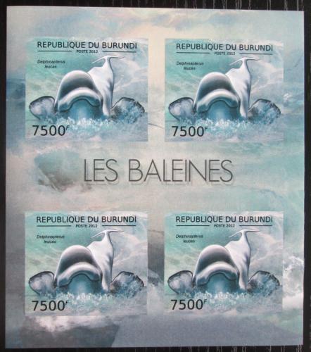 Poštovní známky Burundi 2012 Bìluha severní neperf. Mi# 2842 B Bogen