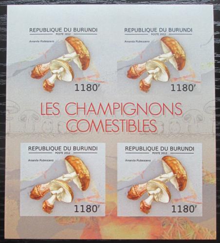 Poštovní známky Burundi 2012 Muchomùrka rùžovka neperf. Mi# 2738 B Bogen