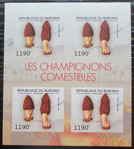 Poštovní známky Burundi 2012 Smrž kuželovitý neperf. Mi# 2739 B Bogen