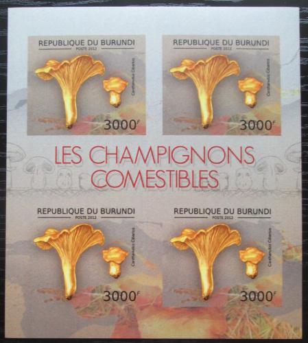 Poštovní známky Burundi 2012 Liška obecná neperf. Mi# 2740 B Bogen