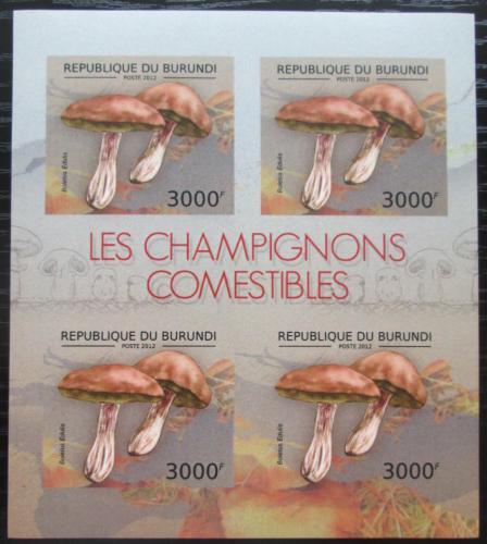 Poštovní známky Burundi 2012 Høib smrkový neperf. Mi# 2741 B Bogen