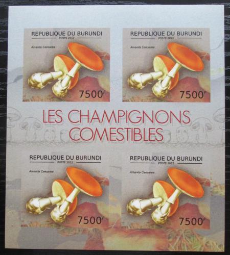 Poštovní známky Burundi 2012 Muchomùrka císaøka neperf. Mi# 2742 B Bogen