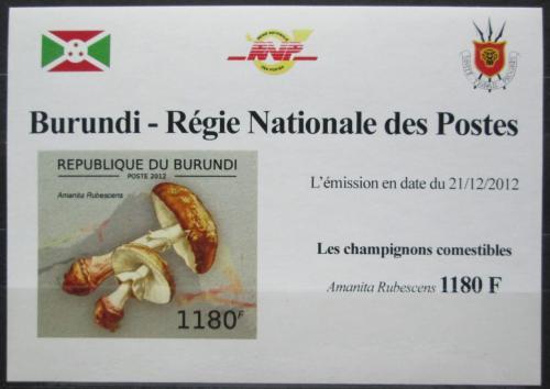 Poštovní známka Burundi 2012 Muchomùrka rùžovka DELUXE Mi# 2738 B Block