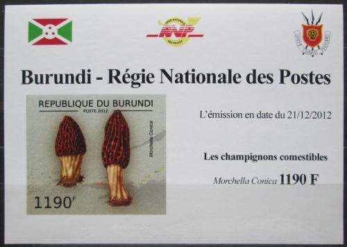 Poštovní známka Burundi 2012 Smrž kuželovitý DELUXE Mi# 2739 B Block