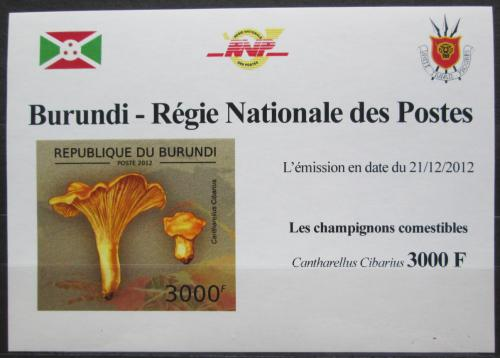 Poštovní známka Burundi 2012 Liška obecná DELUXE Mi# 2740 B Block