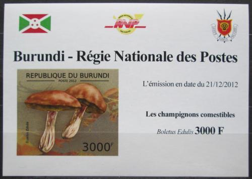 Poštovní známka Burundi 2012 Høib smrkový DELUXE Mi# 2741 B Block