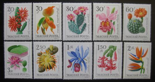 Poštovní známky Maïarsko 1965 Kvìtiny Mi# 2164-73