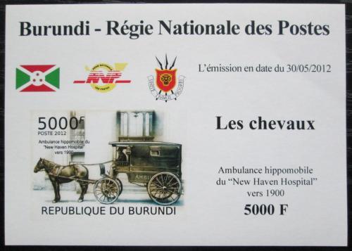Poštovní známka Burundi 2012 Nemocnièní dostavník neperf. DELUXE Mi# 2404 B Block