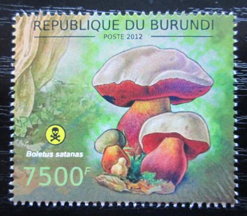 Poštovní známka Burundi 2012 Høib satan Mi# 2747