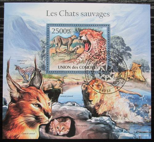 Poštovní známka Komory 2011 Koèkovité šelmy Mi# Block 633 Kat 13€