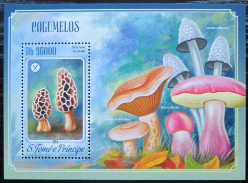 Poštovní známka Svatý Tomáš 2014 Houby Mi# Block 1013 Kat 10€