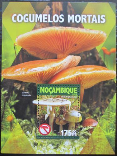 Poštovní známka Mosambik 2016 Jedovaté houby Mi# Block 1101 Kat 10€