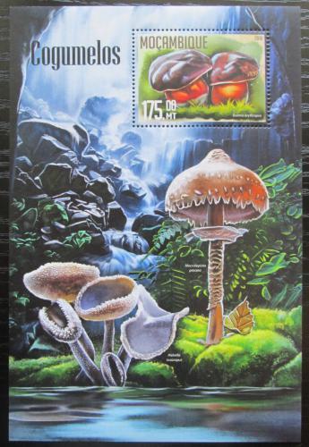 Poštovní známka Mosambik 2016 Houby Mi# Block 1128 Kat 10€