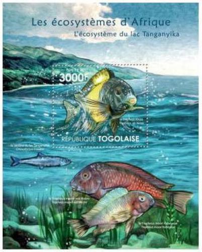 Poštovní známka Togo 2011 Ryby jezera Tanganyika Mi# Block 647 Kat 12€