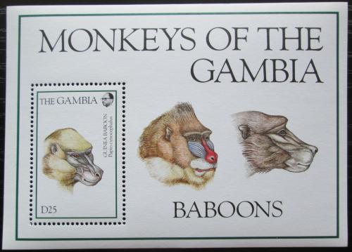 Poštovní známka Gambie 1994 Pavián Mi# Block 230 Kat 11€