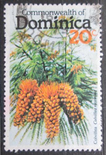Poštovní známka Dominika 1979 Colvillea racemosa Mi# 642