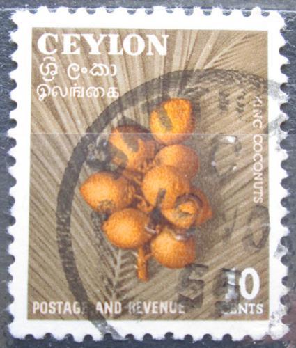 Poštovní známka Cejlon 1954 Kokosové oøechy Mi# 281