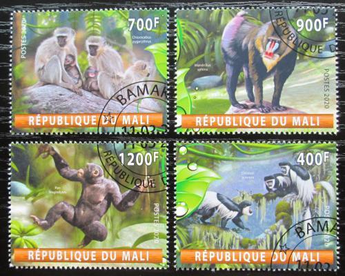 Poštovní známky Mali 2020 Opice Mi# N/N