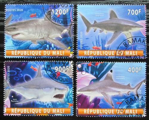 Poštovní známky Mali 2020 Žraloci Mi# N/N