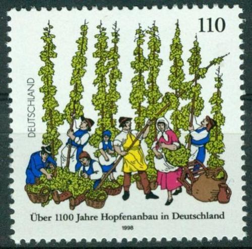 Poštovní známka Nìmecko 1998 Pìstovaní chmele, 1100. výroèí Mi# 1999