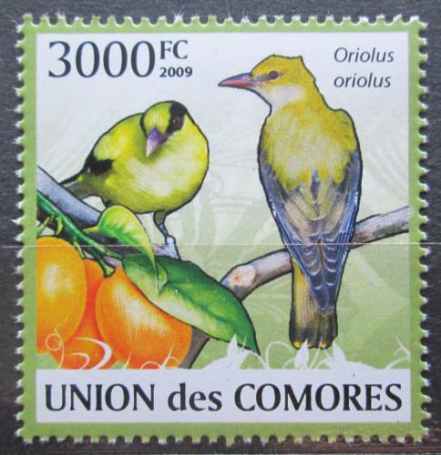 Poštovní známka Komory 2009 Žluva hajní Mi# 2419