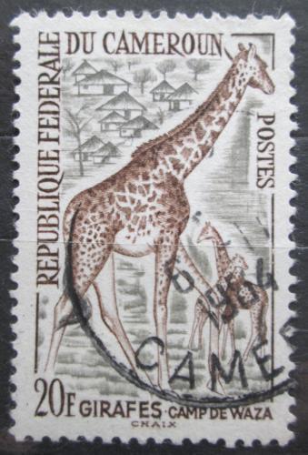 Poštovní známka Kamerun 1962 Žirafa Mi# 366