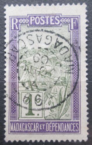 Poštovní známka Madagaskar 1908 Agáve sisalová Mi# 74