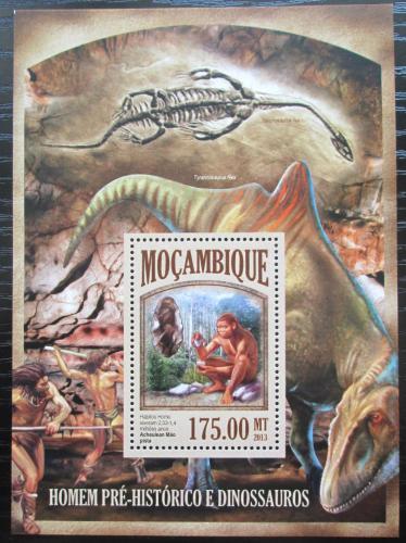 Poštovní známka Mosambik 2013 Život v pravìku Mi# Block 802 Kat 10€
