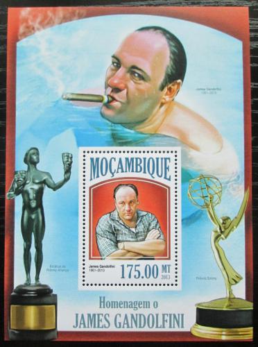 Poštovní známka Mosambik 2013 James Gandolfini, herec Mi# Block 815 Kat 10€