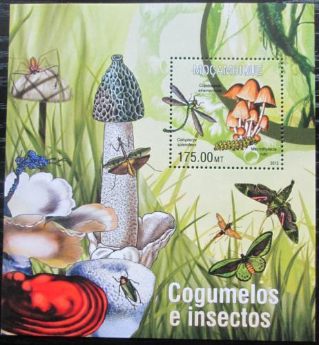 Poštovní známka Mosambik 2013 Houby a hmyz Mi# Block 768 Kat 10€