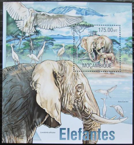 Poštovní známka Mosambik 2013 Sloni Mi# Block 779 Kat 10€