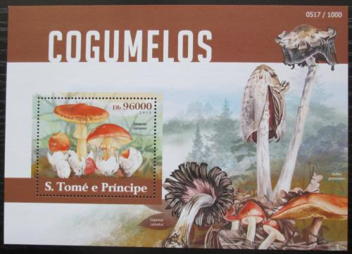 Poštovní známka Svatý Tomáš 2015 Houby Mi# Block 1114 Kat 10€