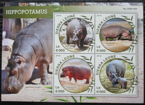 Poštovní známky Sierra Leone 2016 Hroši Mi# 6883-86 Kat 11€