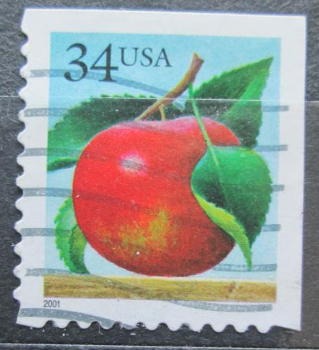 Poštovní známka USA 2001 Jablko Mi# 3440 BE
