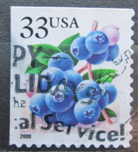 Poštovní známka USA 2000 Borùvky Mi# 3110 IIBE